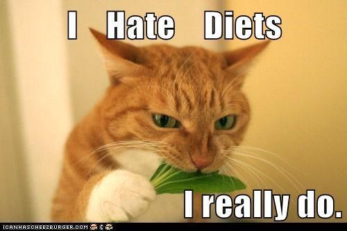 Diet-cat